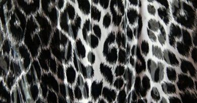 Aj leopardí vzor sa môže nosiť štýlovo. Poradíme, ako na to