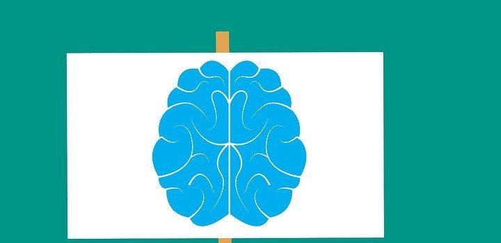 Mozog ako jeden z dôležitých orgánov. Čím mu škodíme?